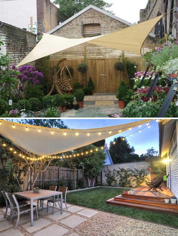 bring shade to yard or patio