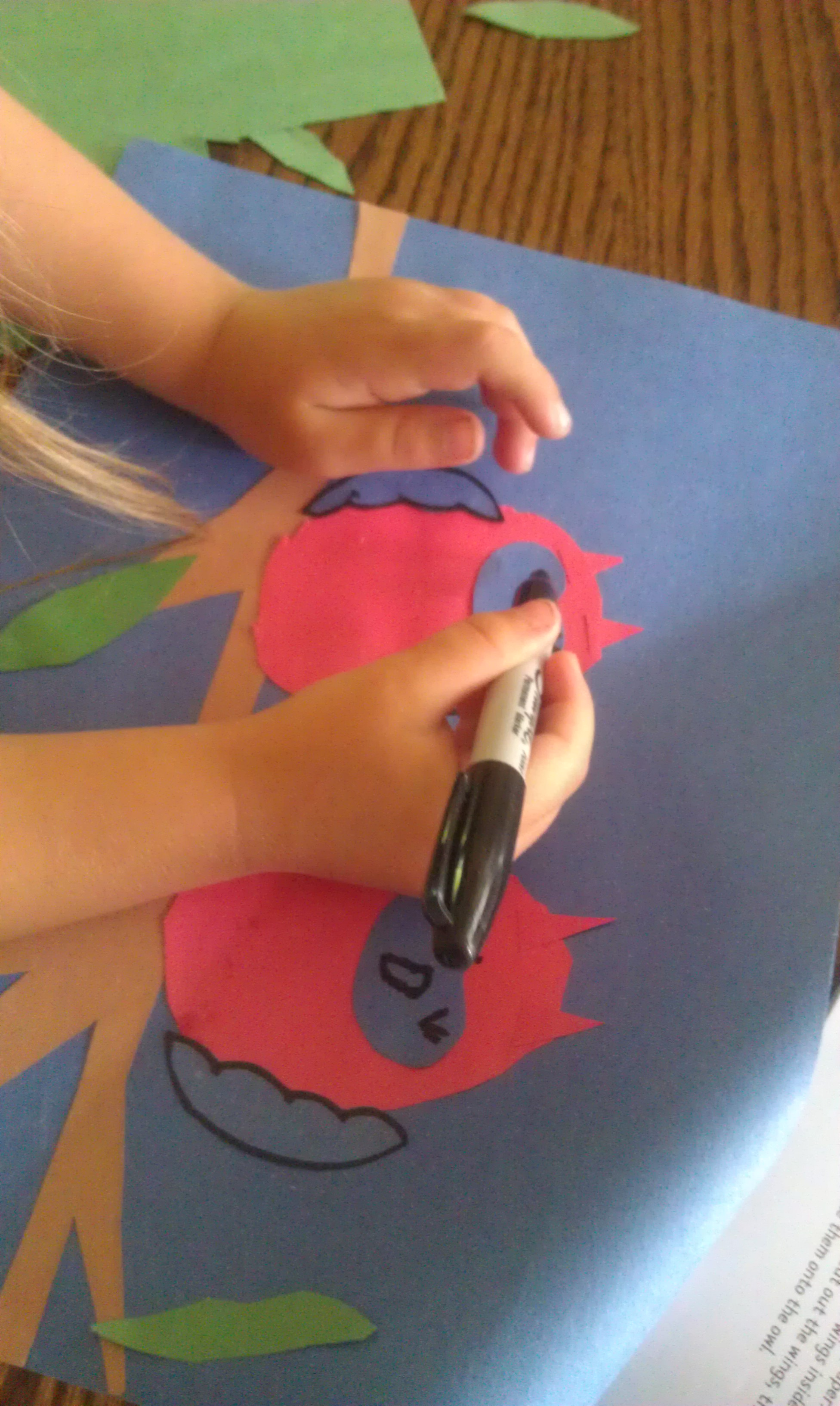 Drawing Paper Craft Owl Faces