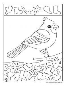 Cardinal Bird Preschool Worksheet. Cardinal. Best Free