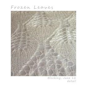 Frozen-Leaves-blocking-detail