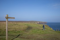 Cache hunting near the Brough of Deerness