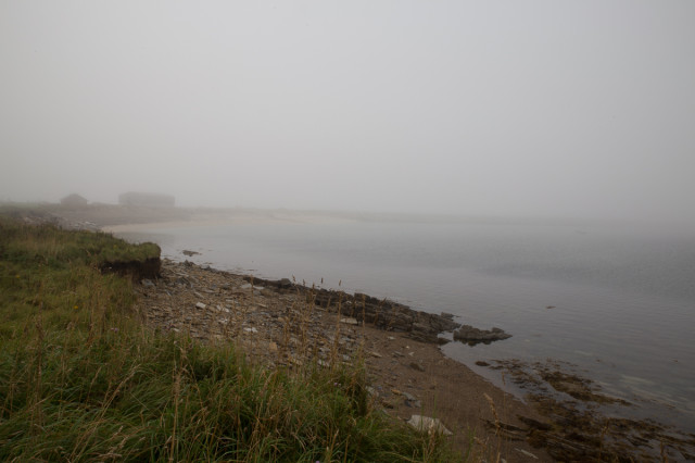 The view from the cache, with added haar