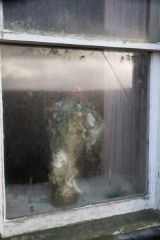 Window detail
