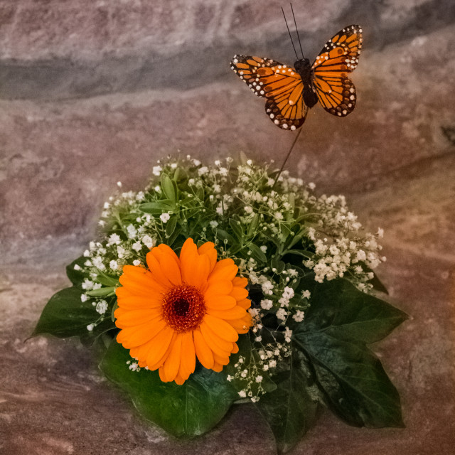 butterfly posy (1 of 1)