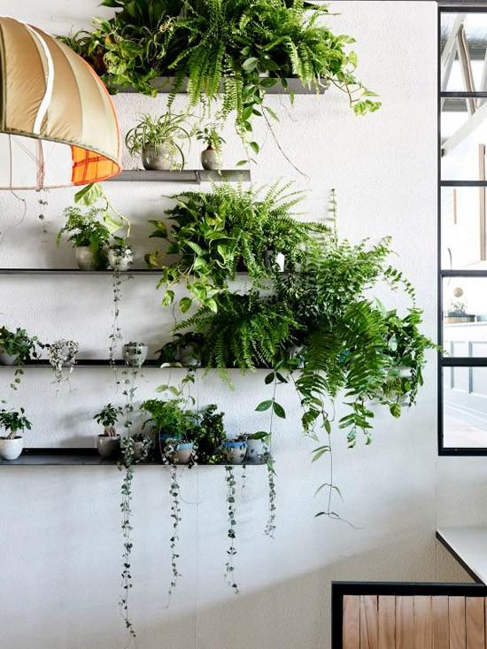 Lekker veel groen in huis  Wooninspiratie