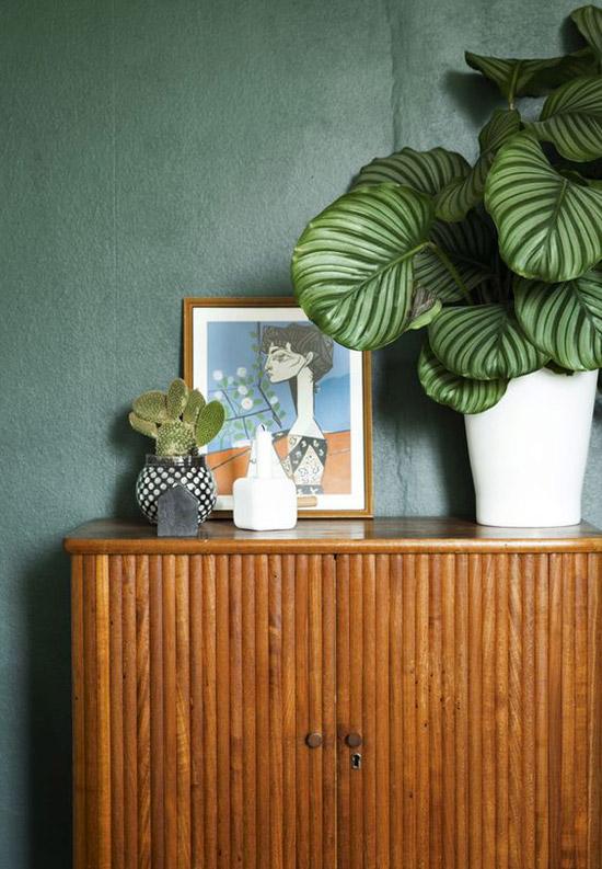 Woonkamer met planten als decoratie  Wooninspiratie