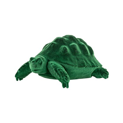 Schildpad Pokey green (Groen)