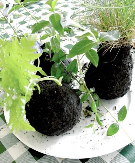 DIY om zelf stringplants te maken via Designsponge