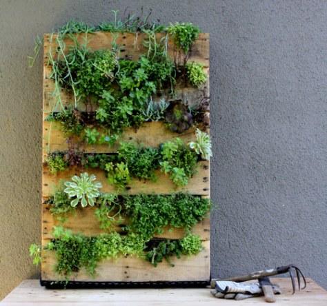 pallet met planten via Designsponge