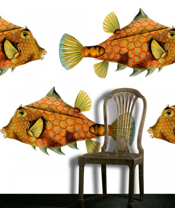 behang Haeckel fish van eye dicted