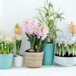 voorjaars blauw past bij jouw interieur