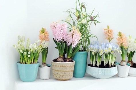 voorjaar in huis via Schijndel gezien