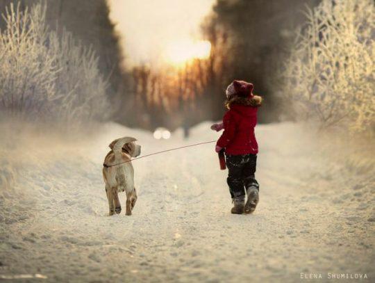 Constrastes de luz, jugando con el perro
