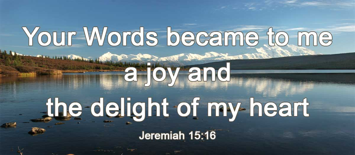 delight is one of