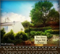 Megan Hall: Tree Hero