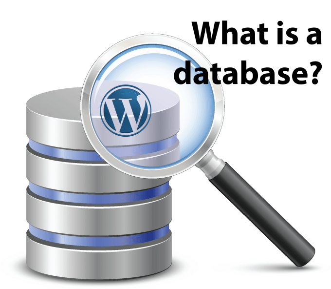 Database Security Wordpress
