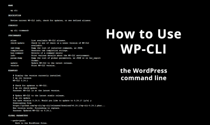 How to Use WP-CLI - WordHer