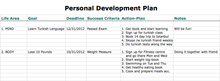 6 personal development plan templates excel pdf formats for Developing a business strategy template