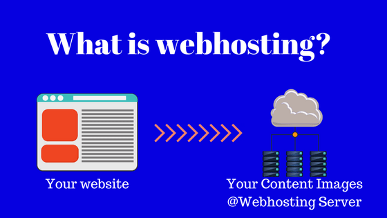 What is Web Hosting for beginners