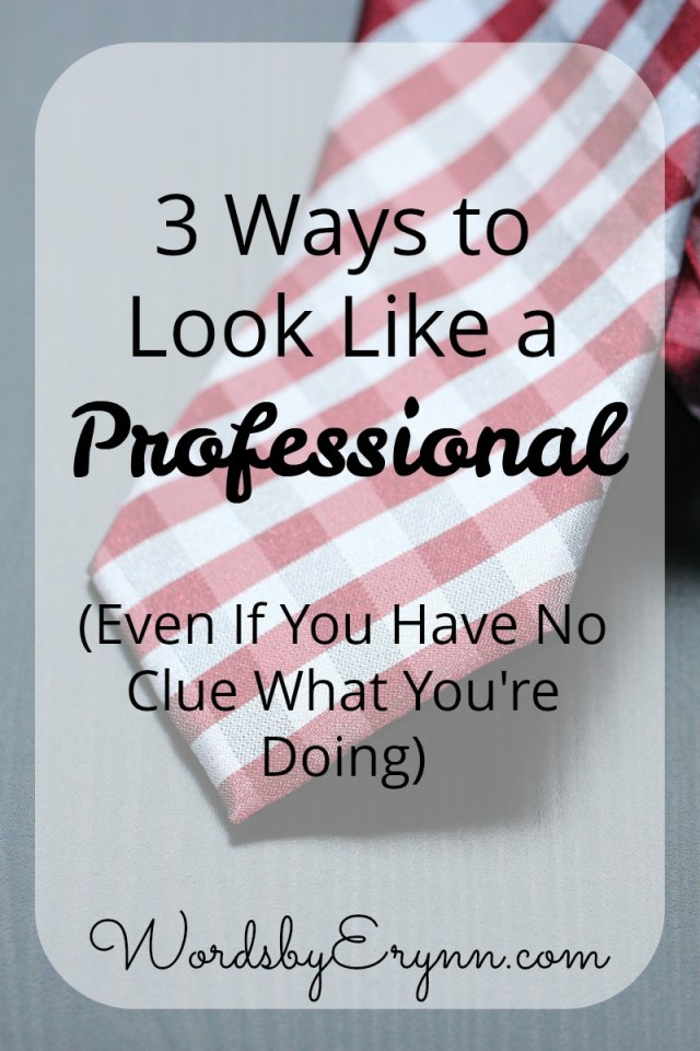 3 Ways to Look Like a Professional (Even If You Have No Clue What You're Doing)- WordsbyErynn