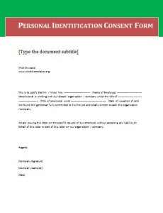 Blank Consent Form