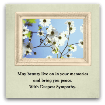 Beautiful Wallpapers With Heartfelt Quotes How To Write Sympathy Notes For Someone You Never Met
