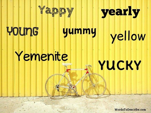 adjectives that start with Y