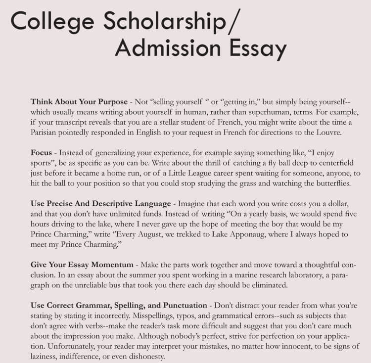 free essay template