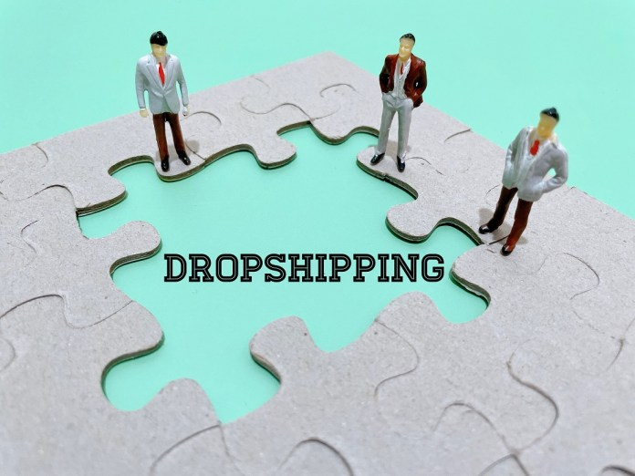 best ecommerce platform for dropshipping business