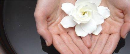 [FLOWER_IN_HAND_GESTURE.jpg]