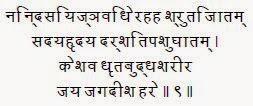 Sri Dasavatar Stotra - Verse 9