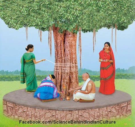 Some trees like peepal & Ficus racemosa are considered sacred, scientific reason behind these customs