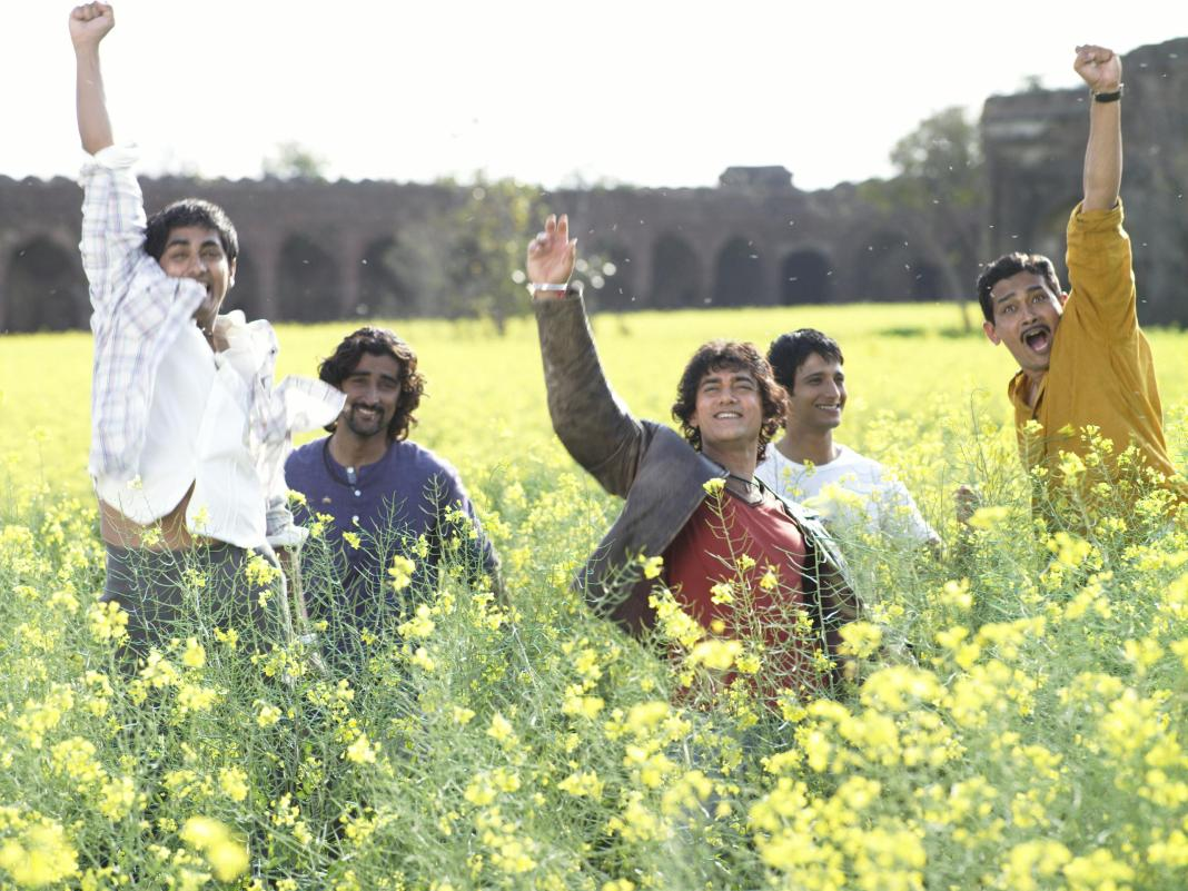 Rang-de-basanti in Yellow Field