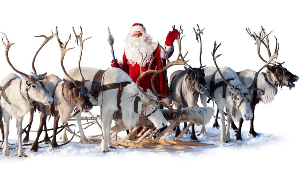 Christmas reindeer flying in sky at cool night