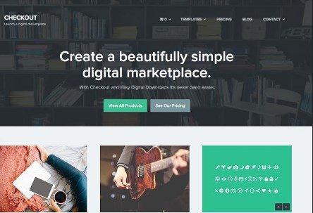Array Themes Checkout WordPress Theme 1