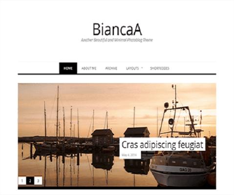 Biancaa WordPress Theme 1