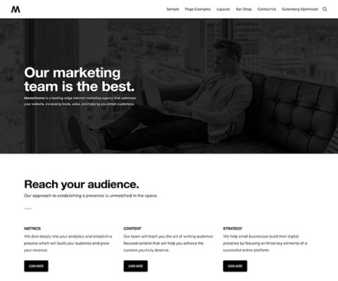 studiopress monochrome pro wordpress theme