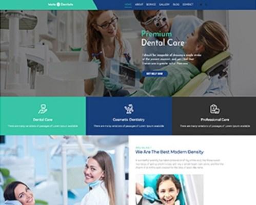 Premium Moto Theme Dentists