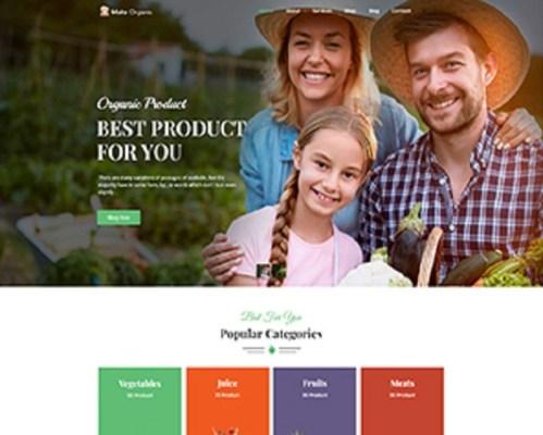 Premium Moto Theme Organic Food Store 1
