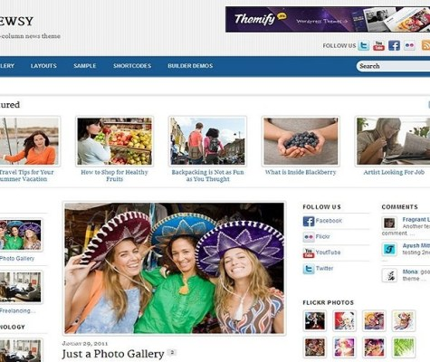 Themify Newsy WordPress Theme