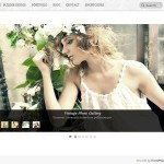 Themify Slide WordPress Theme