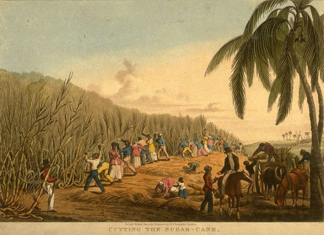 A sugar plantation in 1823.