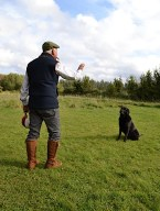 Gundog training with Ian Clinton