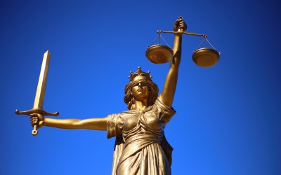 Vital Roles in the World of Law