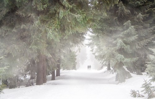 get outside to reduce holiday stress