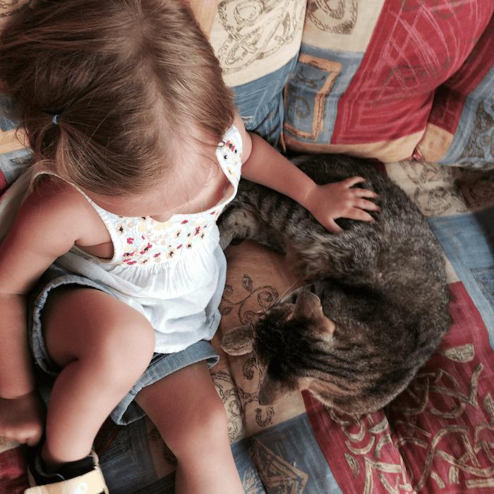 Kleine Katzenlady