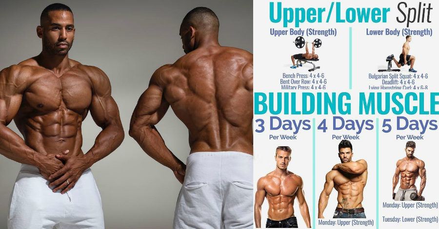 8 Powerful Muscle Building Gym Training Splits Fitness