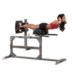 Commercial Gym Roman Chair Diy Desk Covers Body Solid Ghd Back Hyperextension Bench Sgh500 Privacy Policy