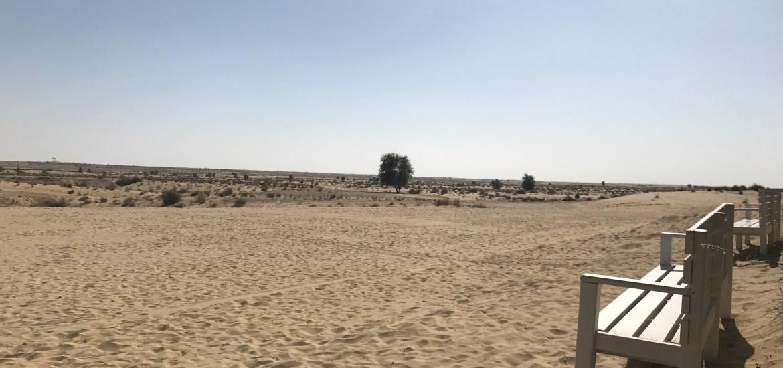 Dubai Businesstrip Desert