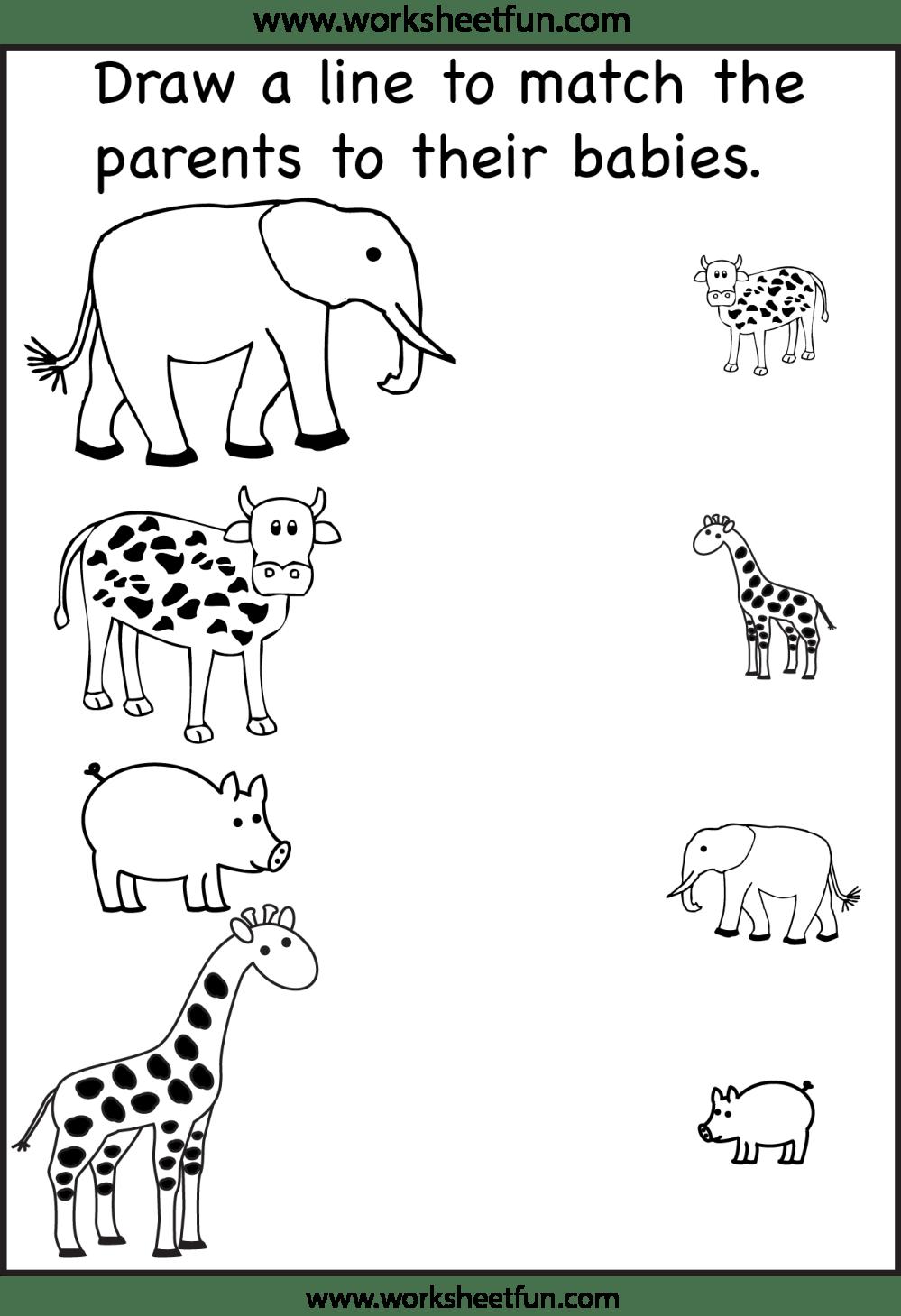 medium resolution of Animal Shadow Match – One Worksheet / FREE Printable Worksheets –  Worksheetfun